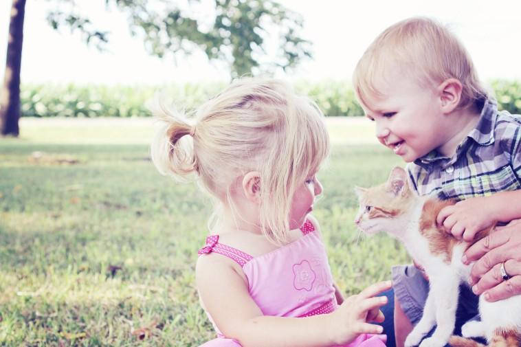 L'animal médiateur, pour une bonne éducation de l'enfant