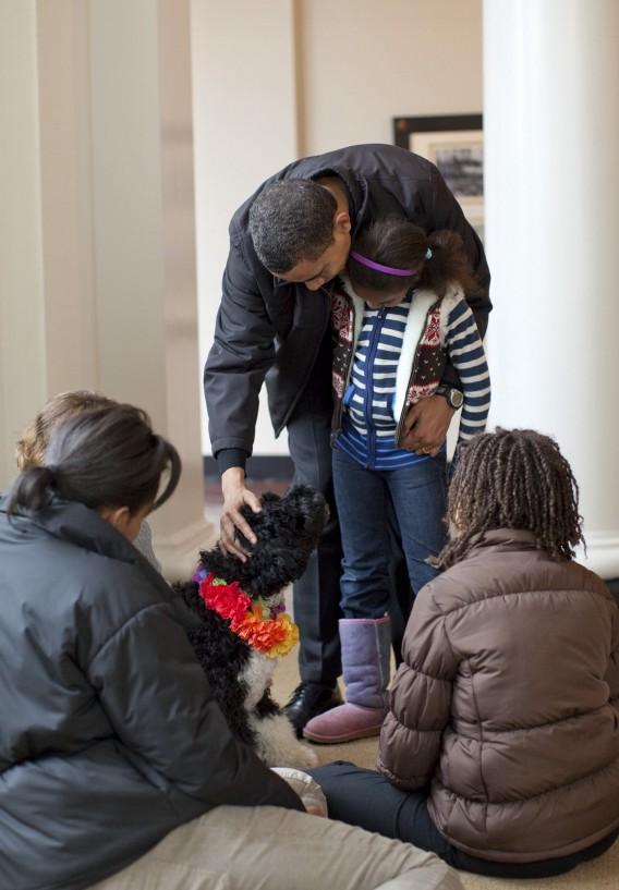séance de médiation animale avec un chien et une petite fille