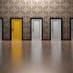 Se lancer en médiation animale : les 7 étapes clés d'une reconversion réussie (EPISODE 3)