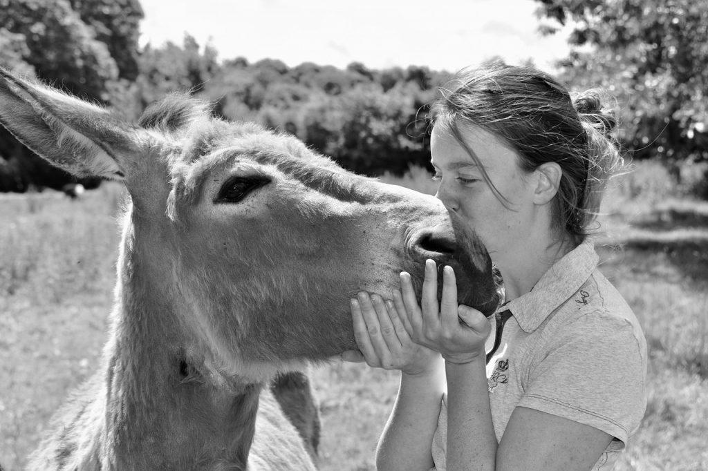 Femme faisant un câlin à un âne.