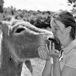 Métiers animaliers : créer une ferme pédagogique ?