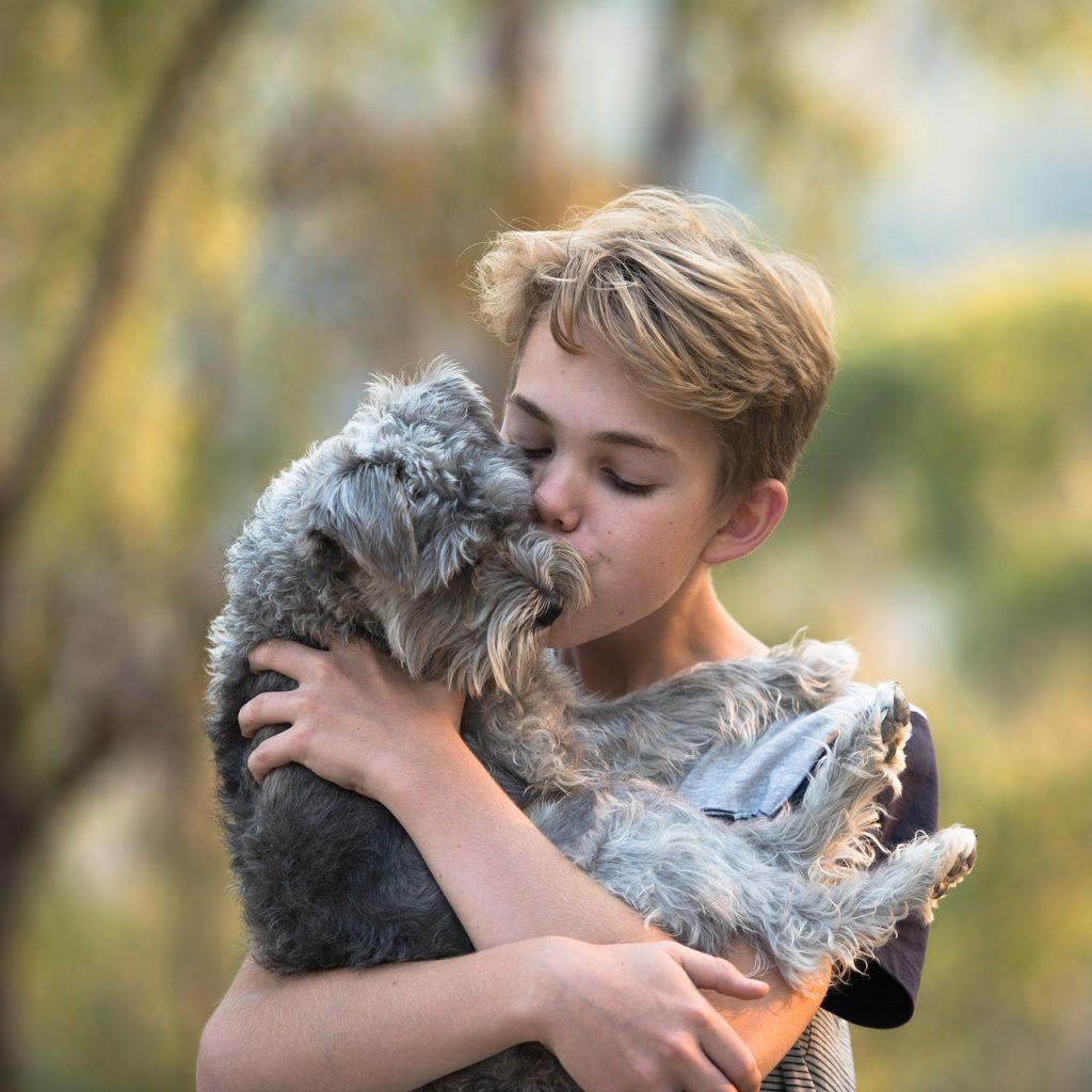 """Une relation """"familière"""" : l'animal de ce jeune garçon semble faire partie de sa famille"""