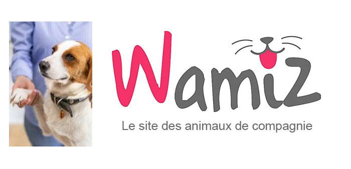 Fiche métier animateur animatrice en médiation animale wamiz.com