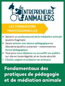 Formation Fondamentaux des pratiques de pédagogie et de médiation animale