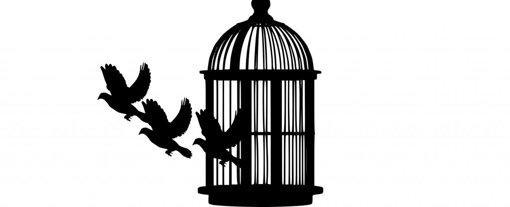 Laisser la personne s'évader par la pensée, grâce à la médiation animale