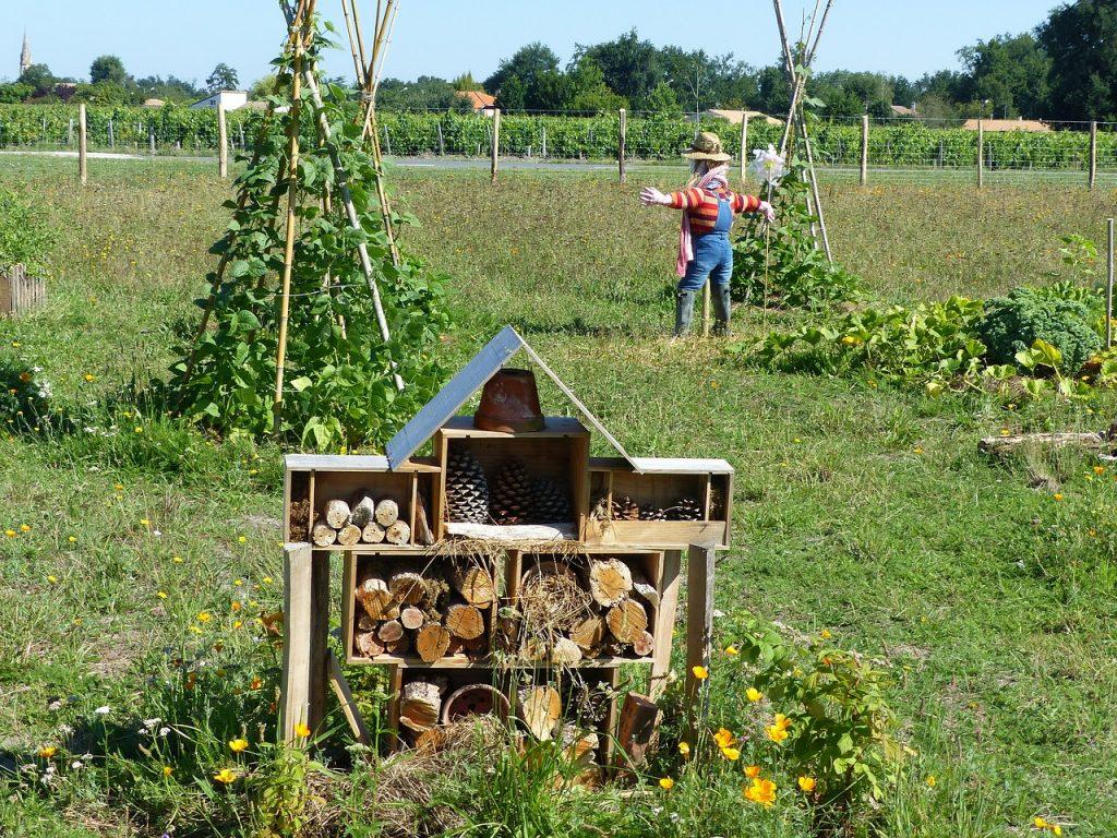 S'associer avec un agriculteur : une solution gagnant-gagnant !