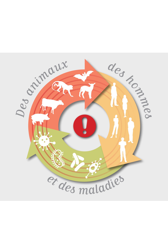 Profitons de la covid-19 pour mettre fin aux zoonoses en ferme pédagogique.
