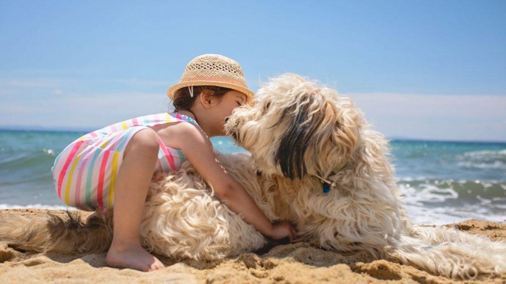 C'est une image d'un enfant avec son chien à la mer au bord de l'eau. Si vous êtes de ces parents qui ont décidé d'adopter un animal en partie pour aider à l'éducation de votre enfant, sachez que vous avez juste !
