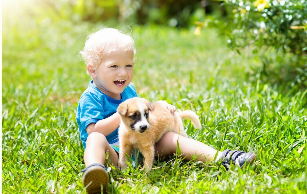 Un mois après l'adoption d'un chien, le comportement de l'enfant peut déjà commencer à s'améliorer. Sur cette image, un tout petit assis sur l'herbe avec un chiot à ses côtés.