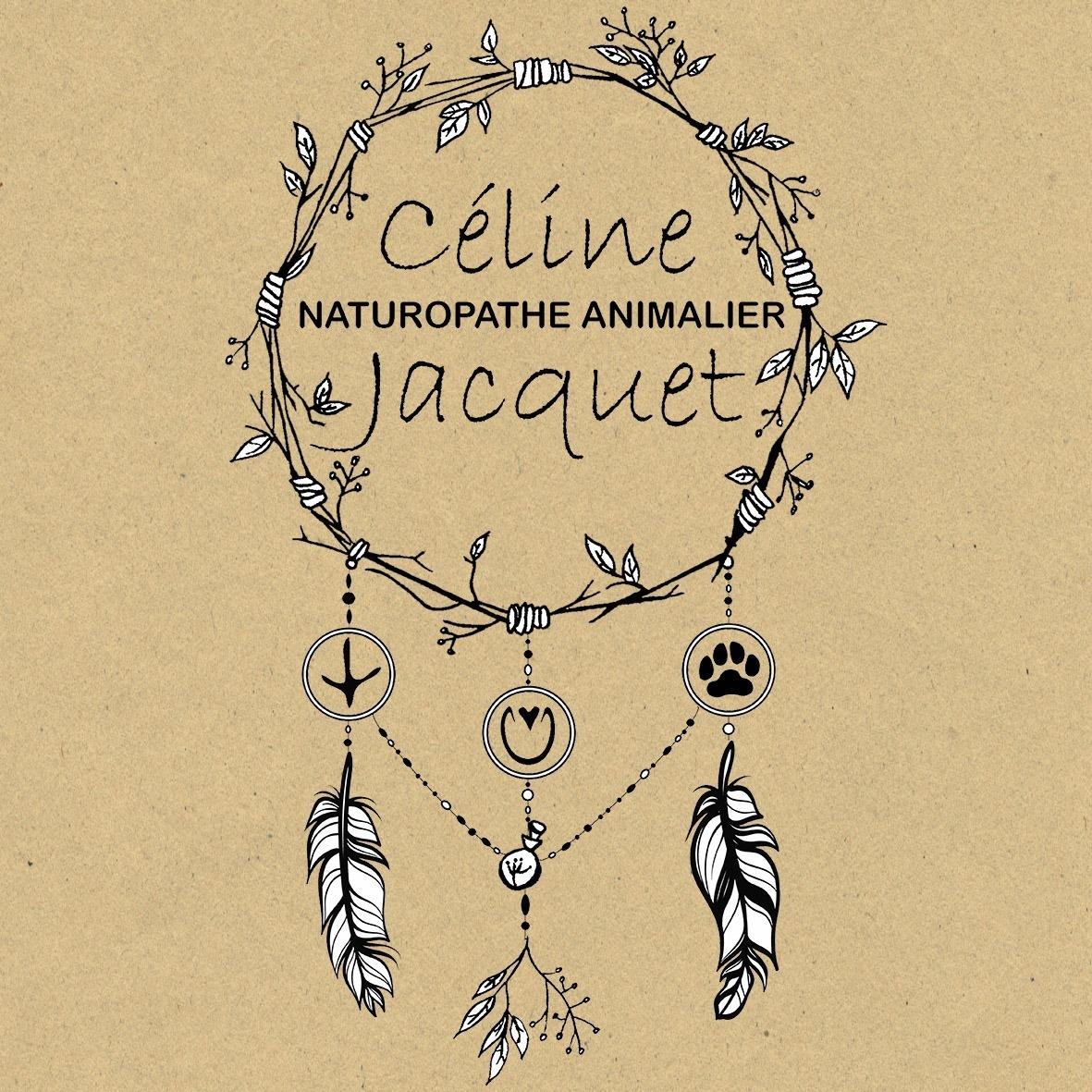 You are currently viewing À la découverte de la naturopathie animale avec Céline Jacquet !