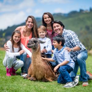 Read more about the article Ces animaux que les parcs animaliers et fermes pédagogiques délaissent souvent…